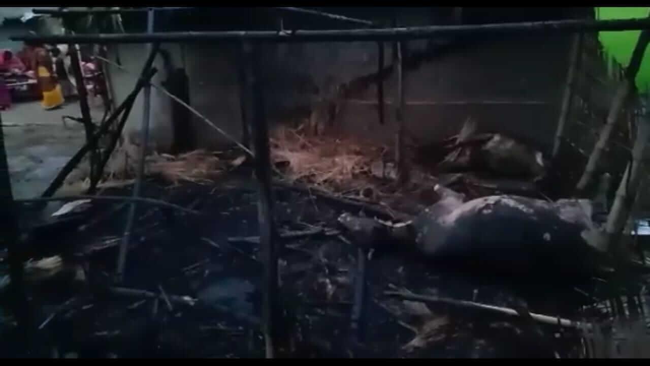 লংকাত  বিদ্যুৎ পৰিবাহী তাৰ চিঙি ভয়ংকৰ অগ্নিকাণ্ড
